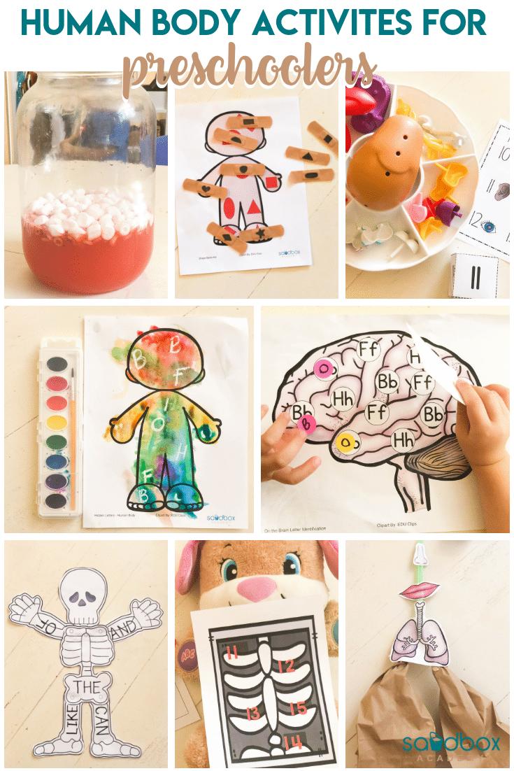 Human Body Theme Preschool Activities Sandbox Academy Preschool Body Theme Preschool Activities Human Body Activities [ 1102 x 735 Pixel ]