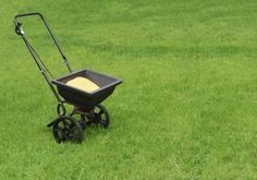 Fertilizer For Lawns: What Type Of Lawn Fertilizer To Use - The best fertilizer for grass will promote healthy turf and minimize weed and pest issues with a thick mat that resists these problems. There are many types of lawn fertilizer and this article will help sort it all out.