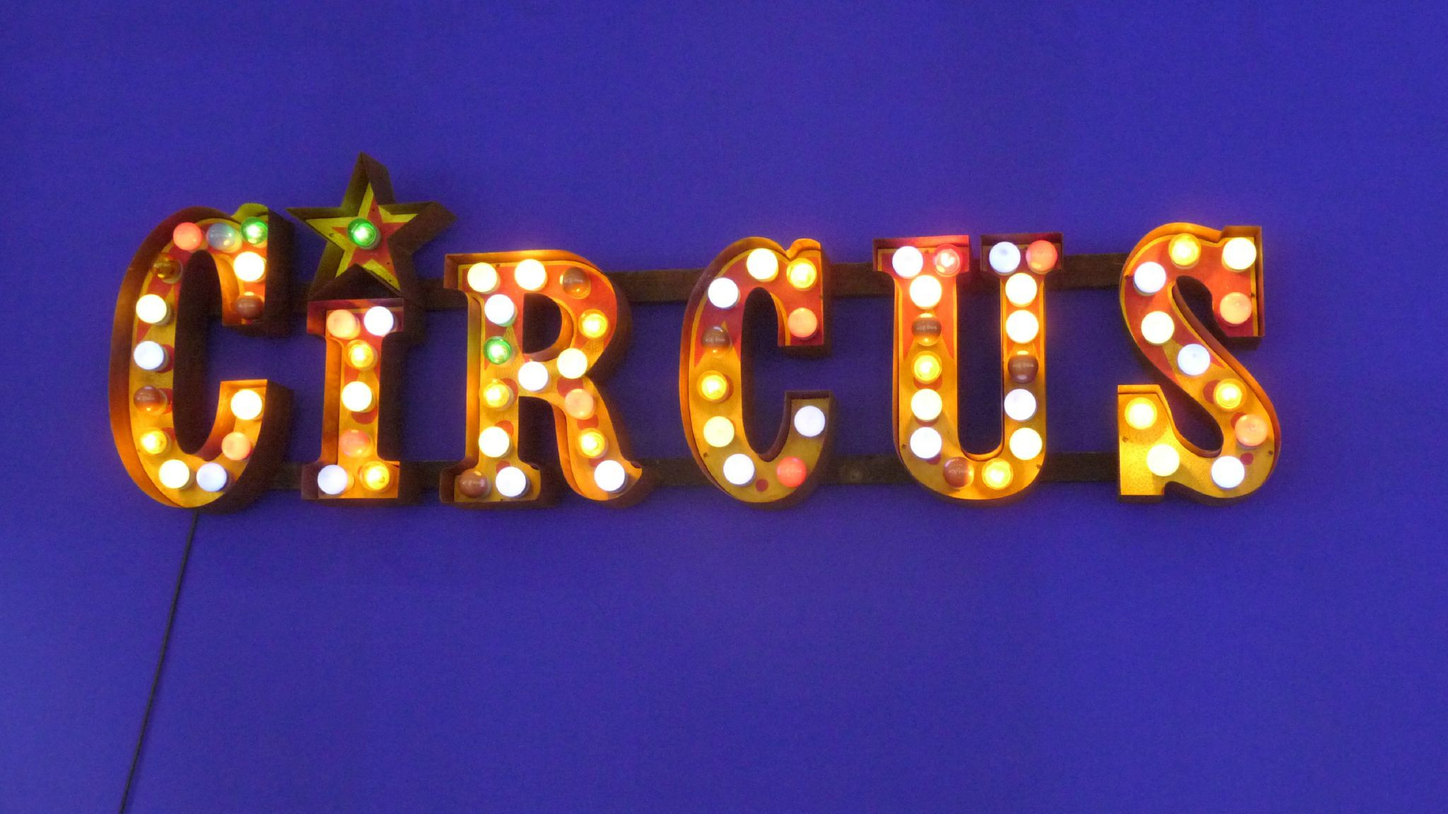 Neon Verlichting Kinderkamer Circus Light Decoratie Night Circus Not My Circus En