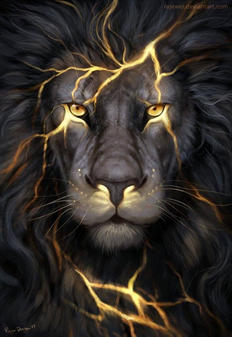 Hình ảnh trong Drawing Print 2 của • Ru • Sư tử, Ý tưởng