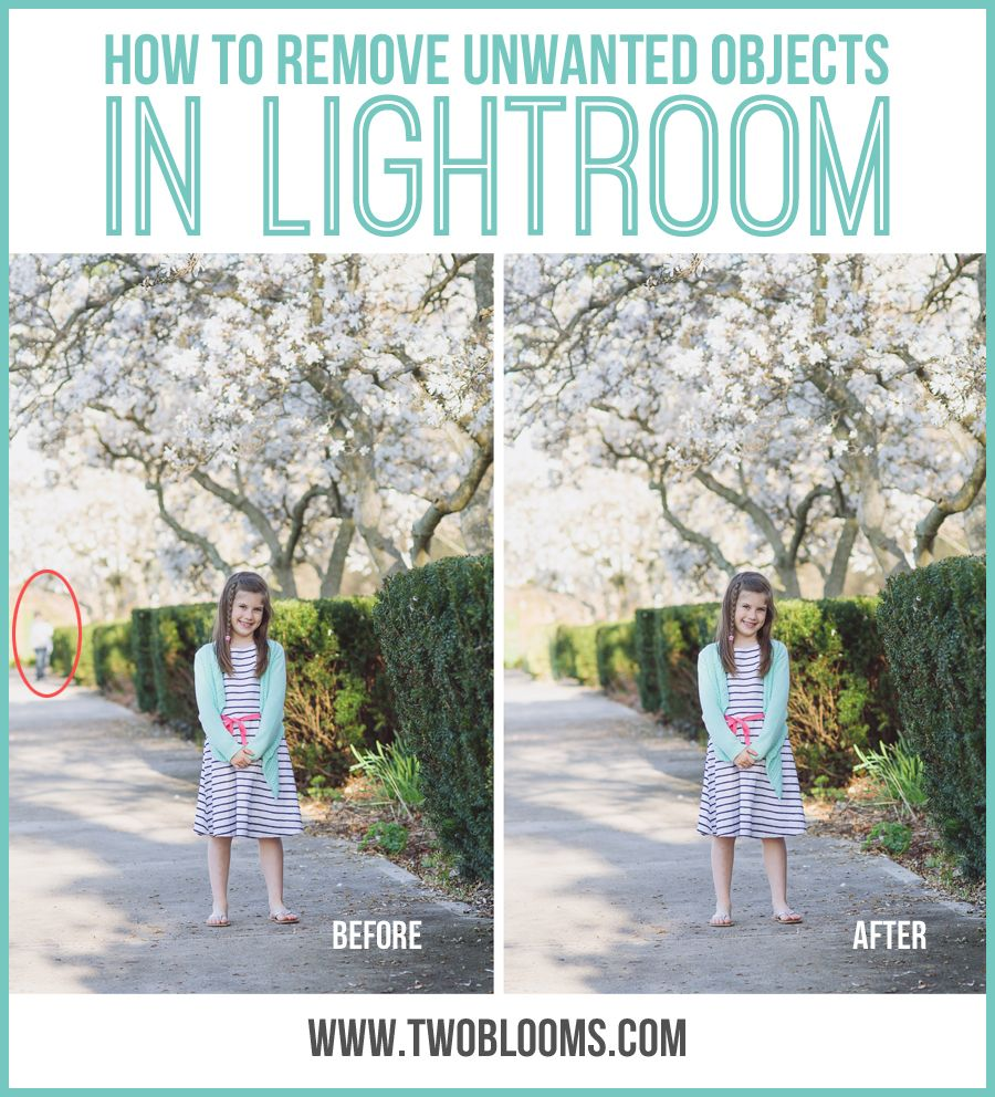 how to get rid of photo information lightroom