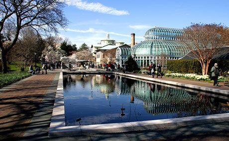 bce4b921701a271c66e0101bb4038cf8 - Places To Eat Near Brooklyn Botanical Gardens
