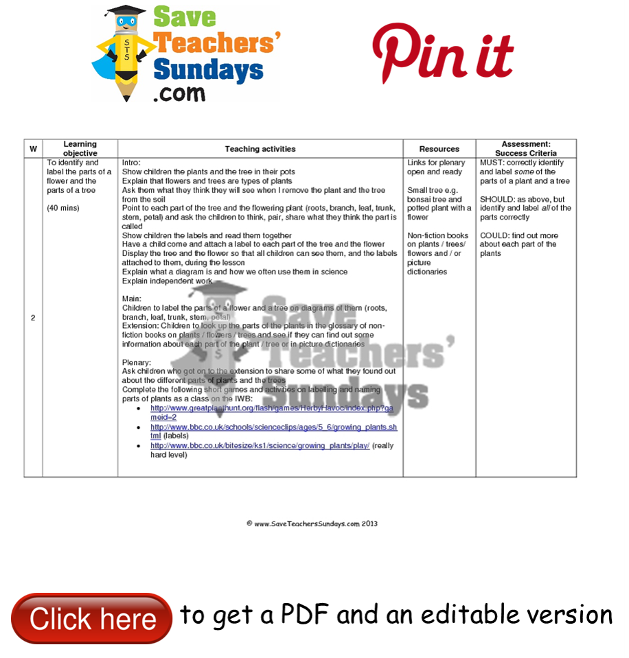Printable English Worksheets For Grade 2 Pdf Label Parts Of A Plant And Parts Of A Tree Lesson Plan Go To Http  Telling Time Half Past Worksheets Pdf with Maths For Grade 8 Worksheets Pdf Year  Lesson  Parts Of A Plant And Parts Of A Tree Worksheets Lesson  Plans And Other Primary Teaching Resources Recurring Decimals To Fractions Worksheet Word
