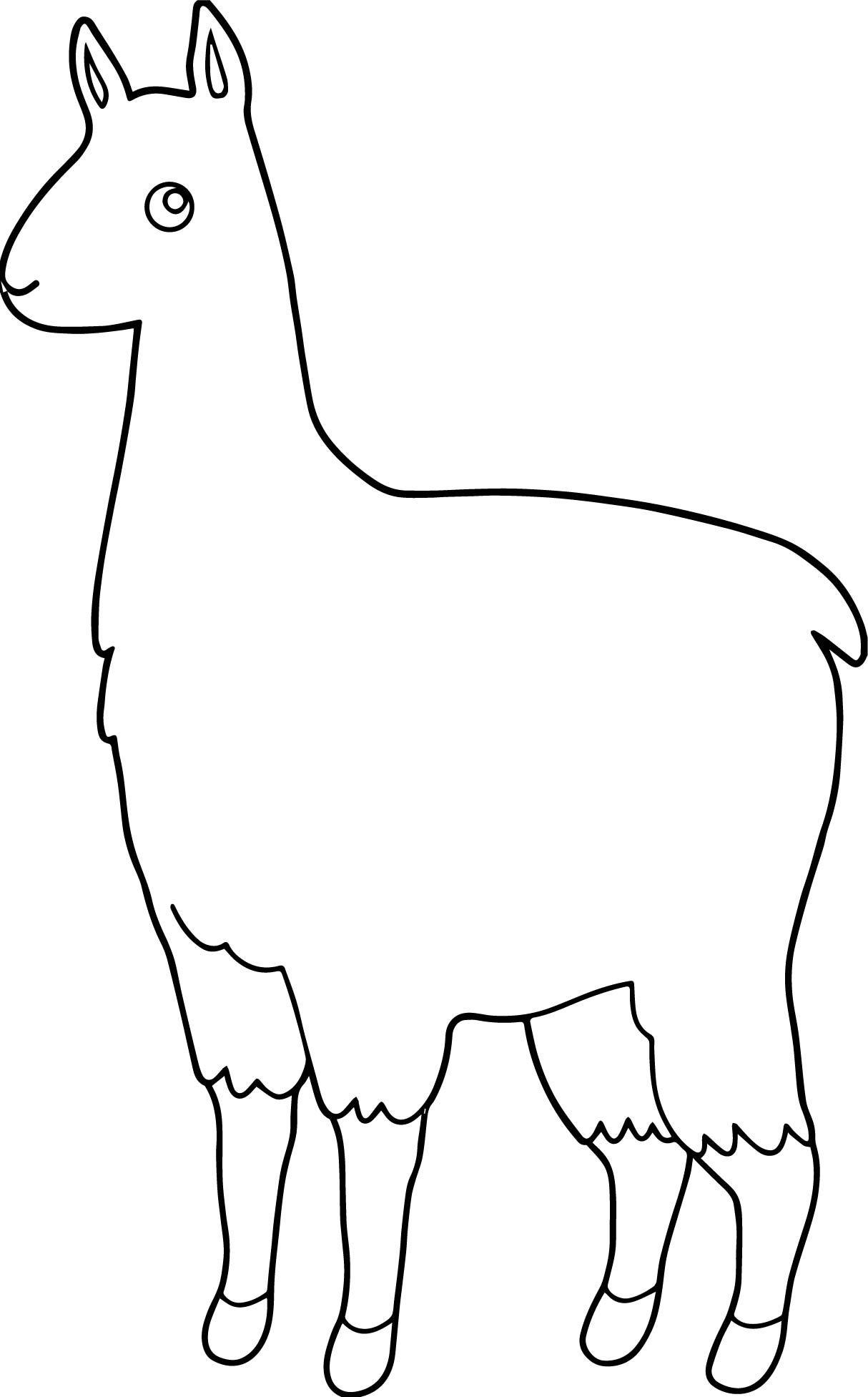 alpaca printable template  alpaca drawing coloring pages