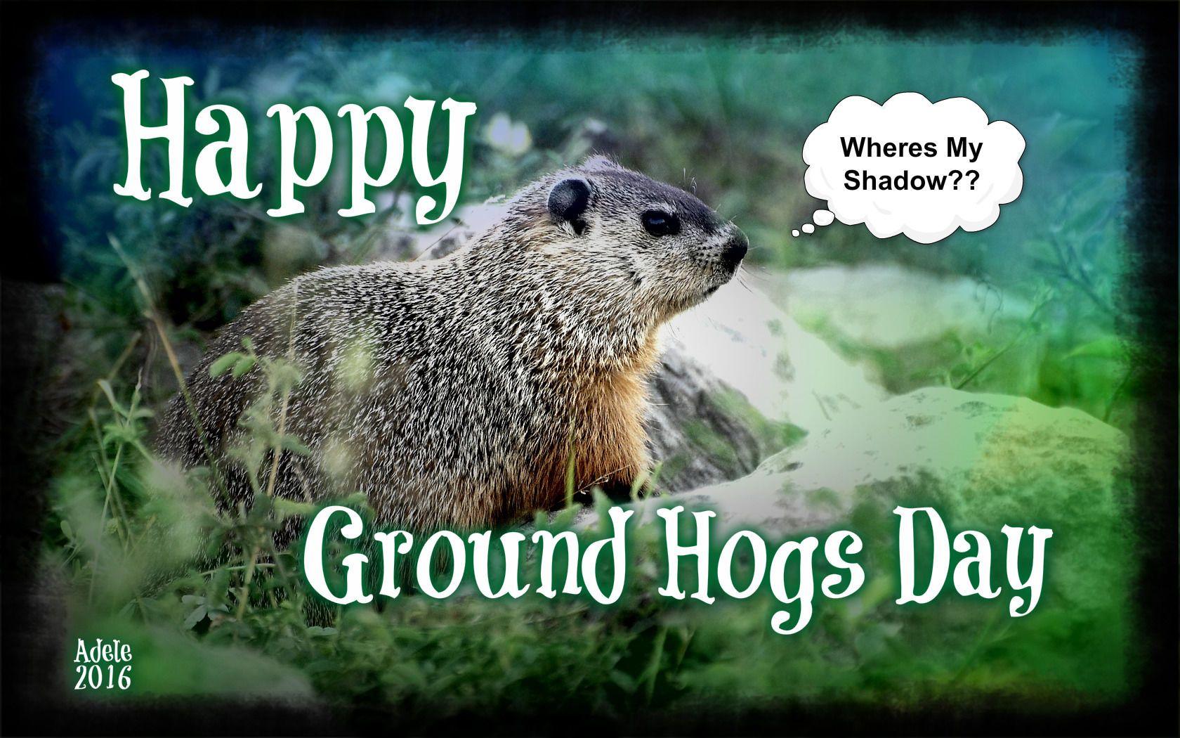 Ground Hogs Day Groundhog Day Movie Groundhog Day Groundhog
