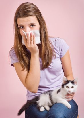 Pin By Critterzone On Critterzone Products Cat Allergies Allergic To Cats Living With Cats