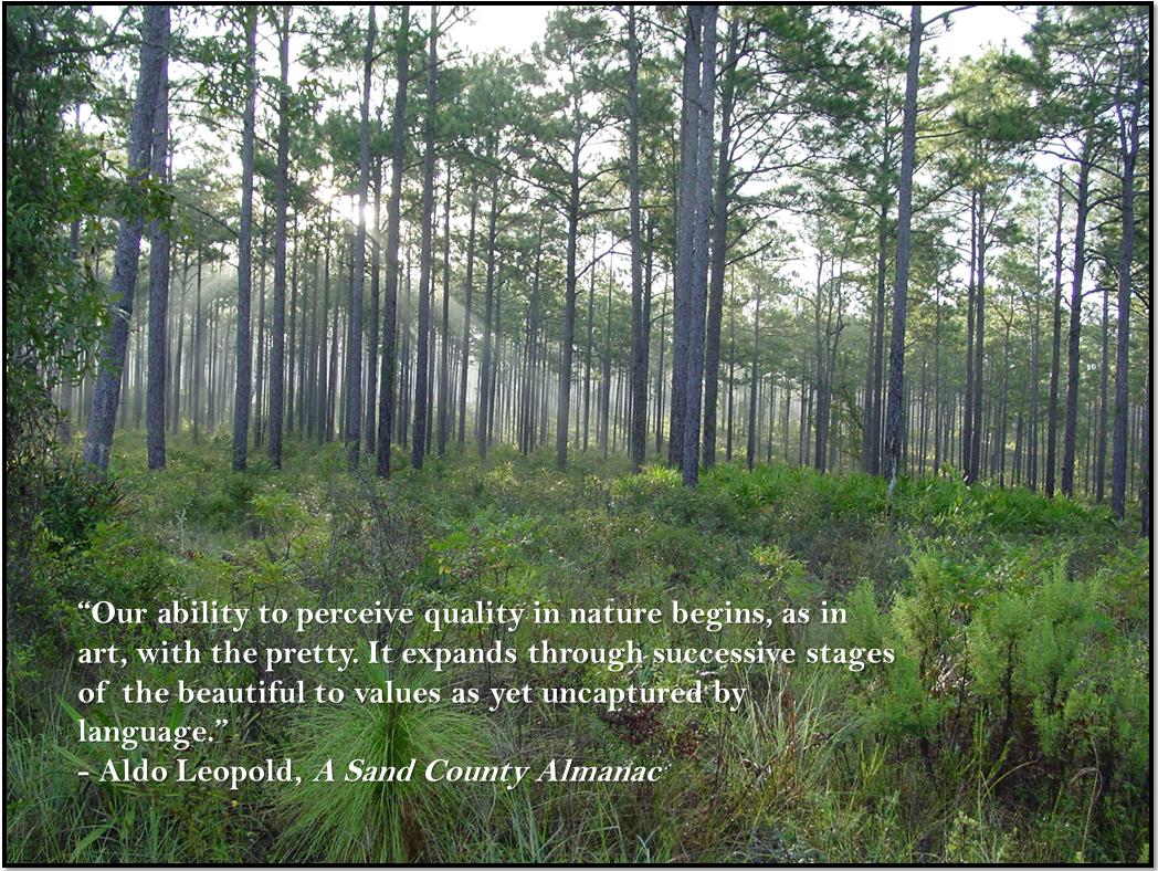 Aldo Leopold A Sand County Almanac