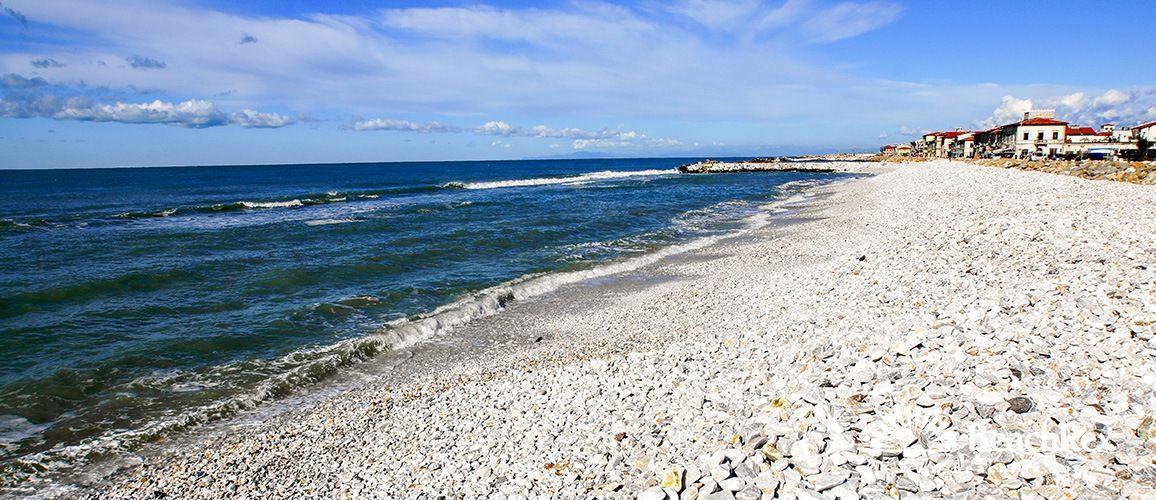 Beach Marina Di Pisa Marina Di Pisa Toscana Italy Tuscany