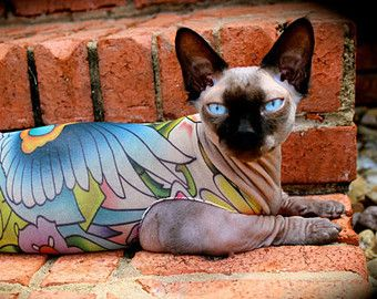 Cat Clothes Buddha Pattern Tattcat Tattoo Dog Sweater Dog Clothes Pet Apparel Fashion Sphynx Cat Clothes Chines Sphynx Cat Chinese Crested Dog Chinese Crested