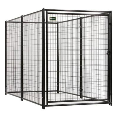 American Kennel Club 6 Ft X 5 Ft X 10 Ft Black Powder Coated Kennel Cl 70510 The Home Depot Dog Kennels For Sale Dog Kennel Outdoor Dog Kennel