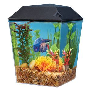 Top Fin® Bettascene 1 Lighted Aquarium Aquariums