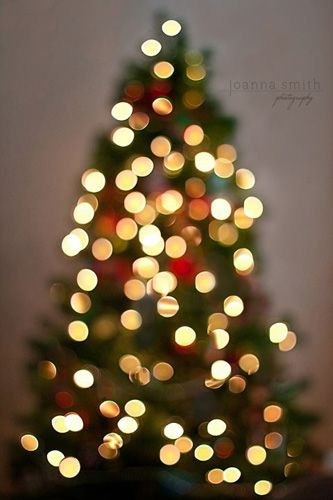 How to Successfully Photograph Your Christmas Tree Christmas