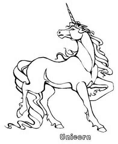 Realistic Animal Coloring Pages Yahoo Search Results Unicorn