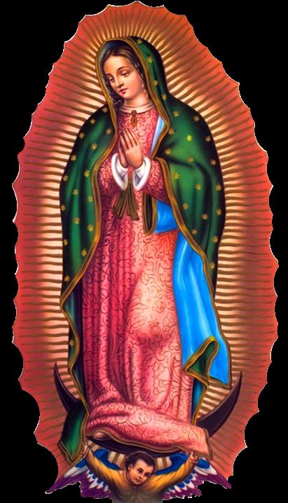 Virgen 5 Png 411 718 Imagenes De La Virgen Virgen De Guadalupe Fotos Imagenes Virgen De Guadalupe