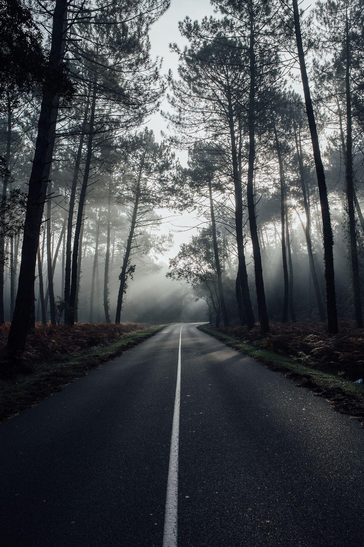 Saraharnould Hossegor Lensblr Dark Landscape Nature Photography Sky Aesthetic dark landscape nature photography