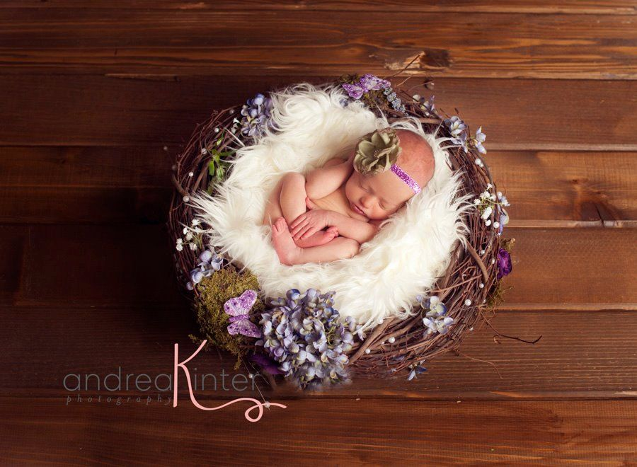 Spring flower newborn nest newborn photography prop wish they posted to aus