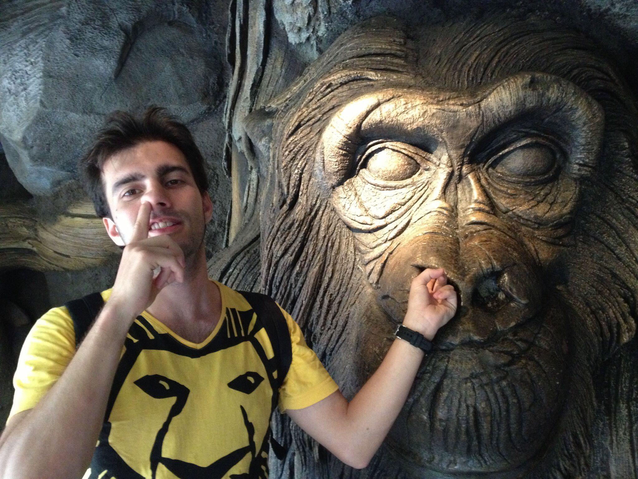 Somos todos macacos?