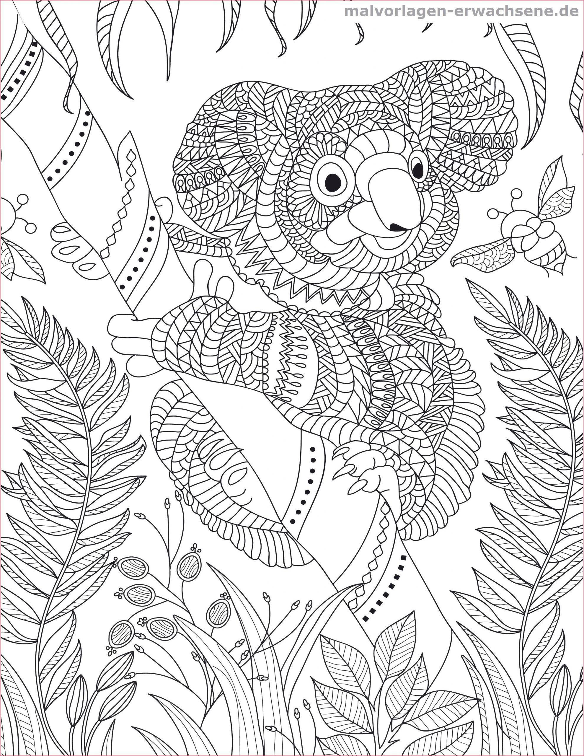 Die Besten Von Papagei Mandala Ausmalbilder Zum Ausdrucken Parrot Mandala Coloring Of Malvorl Bear Coloring Pages Dog Coloring Page Coloring Pages