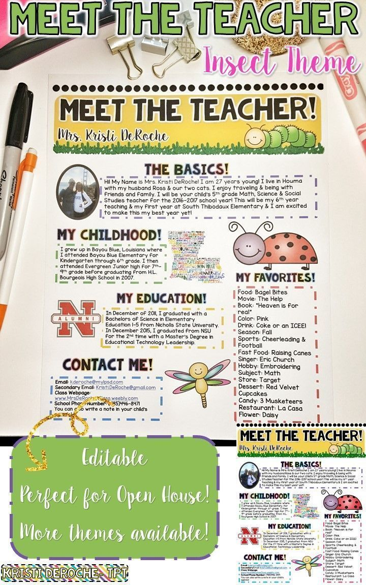 Meet The Teacher Newsletter Editable Insect Theme