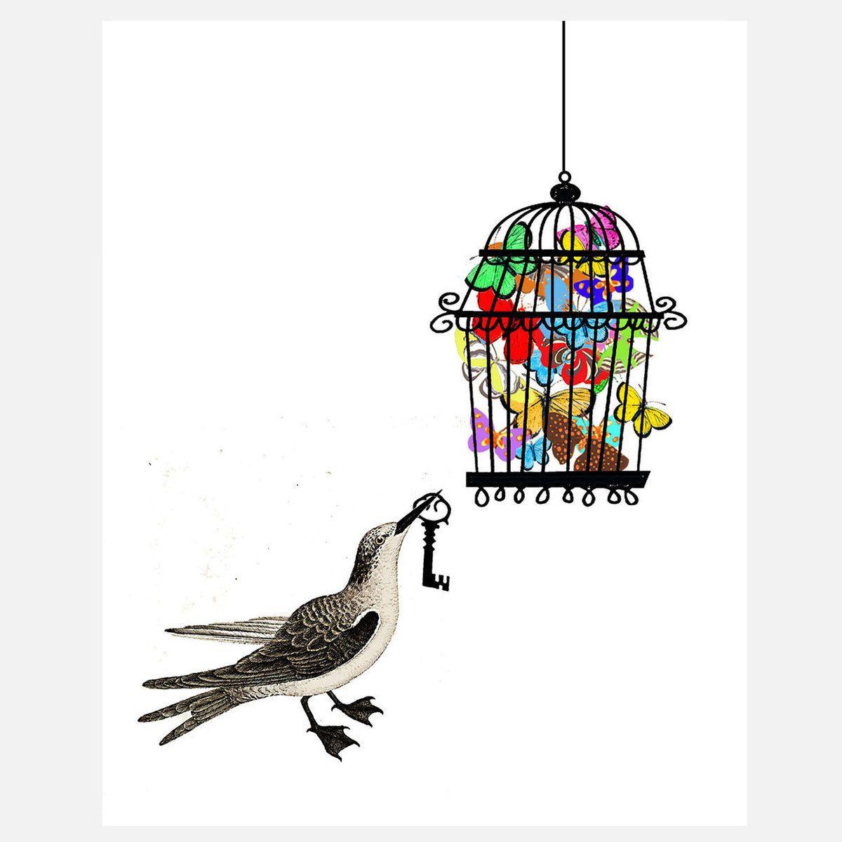 Bird Has The Key