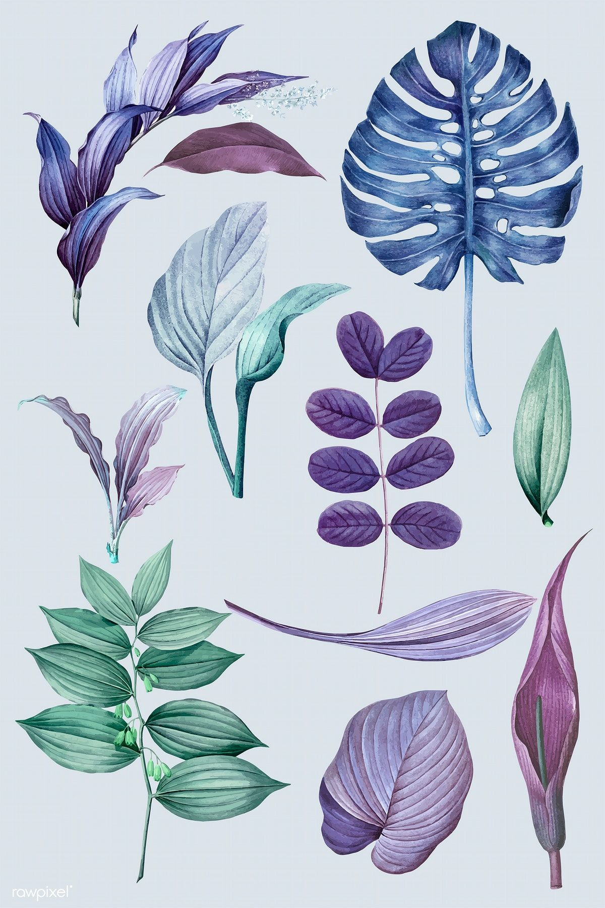 Download premium vector of Purple leaves collection design ...