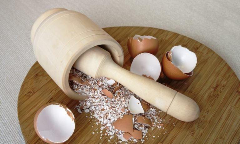 Картинки по запросу яичная скорлупа