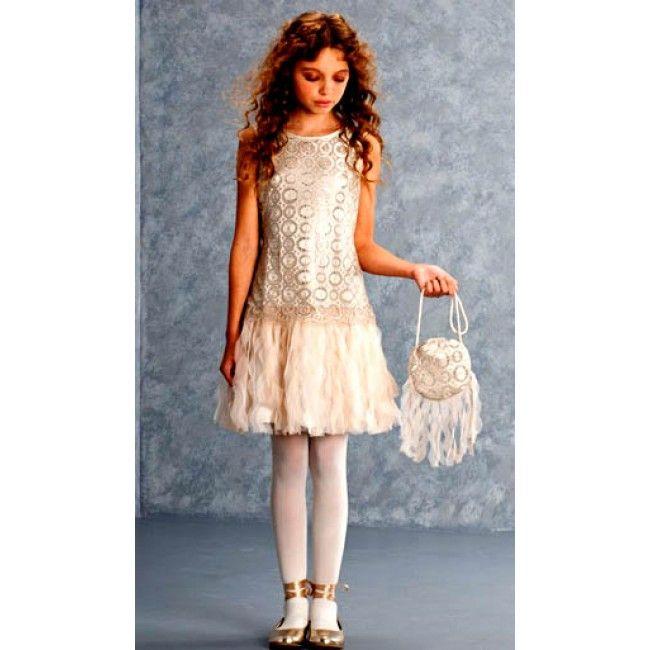 Close Up of Biscotti Luminous Lace Dropwaist Dress