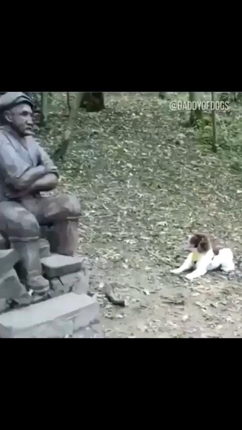 Photo of ¿Quieres jugar a buscar la estatua del Sr. Hooman?