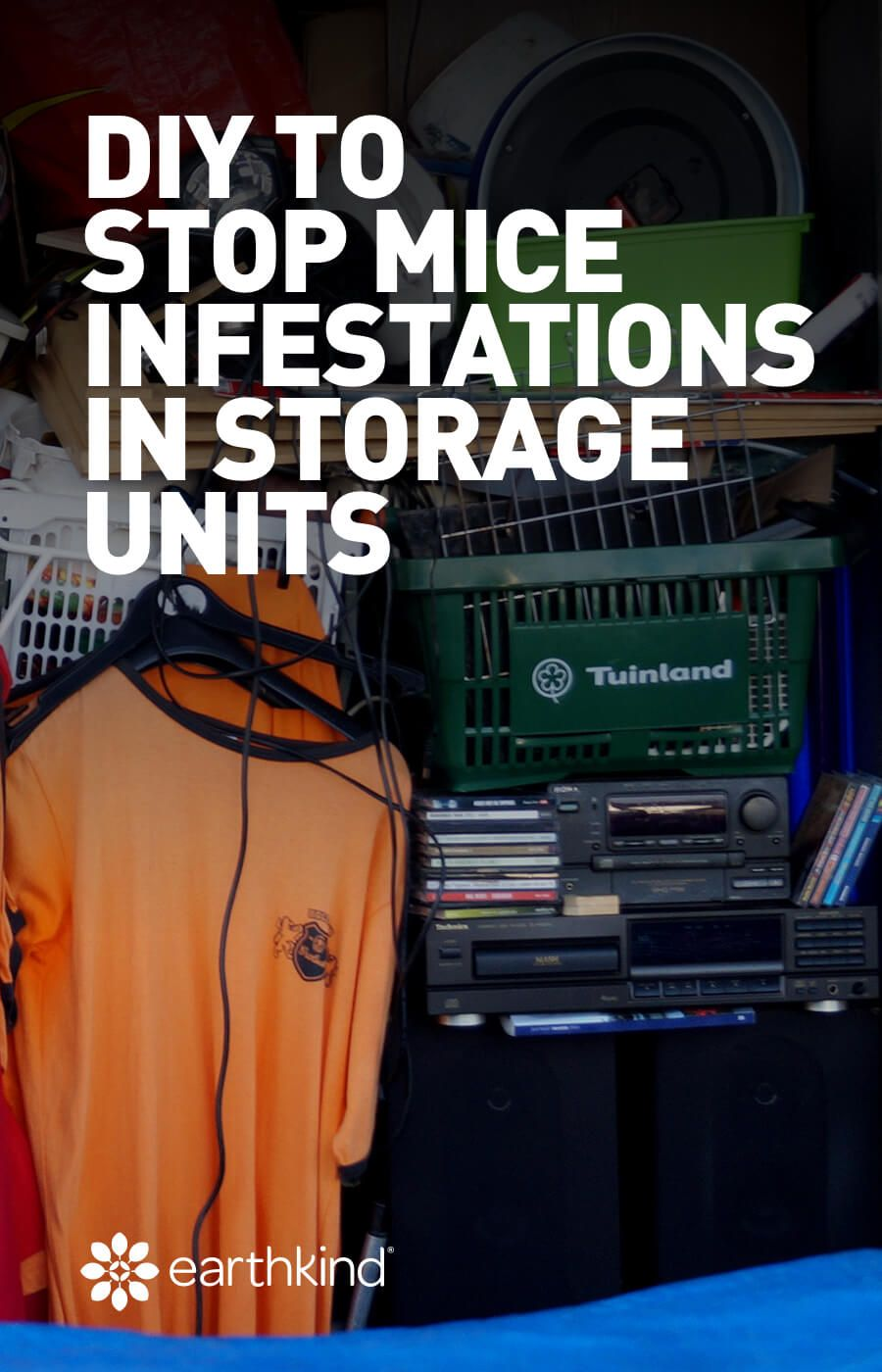Diy to stop mice infestations in storage units earthkind