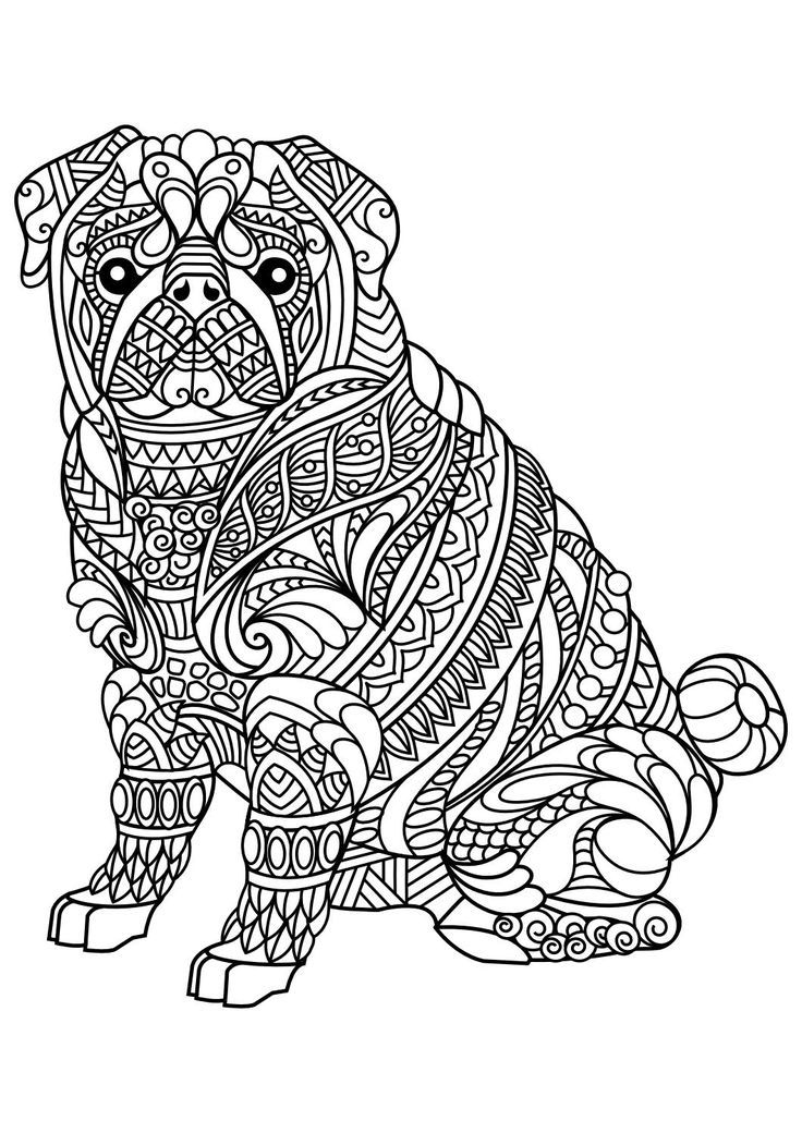 631 Best Adult Colouring Cats Dogs Zentangles Images On At Dog - best of complex elephant coloring pages