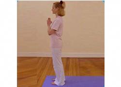 the health benefits of surya namaskar  sun salutation