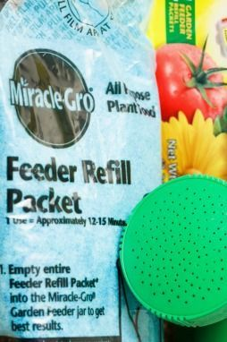 Find Out Which Is The Best Fertilizer For Your Vegetables 400 x 300