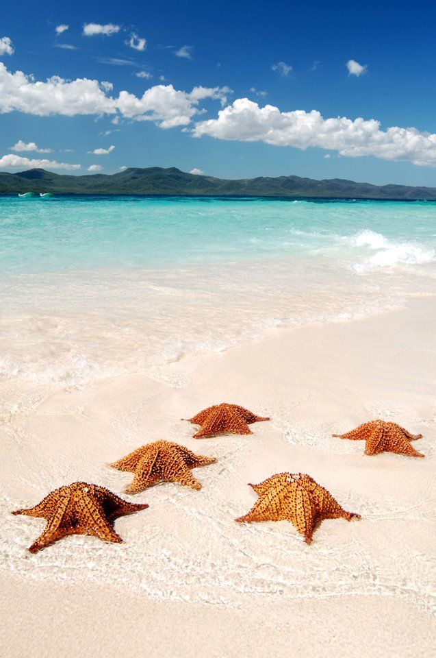 Cayo Arena.- Dominican Republic- This would be one of my first stops......I would watch the sunset on the beach!
