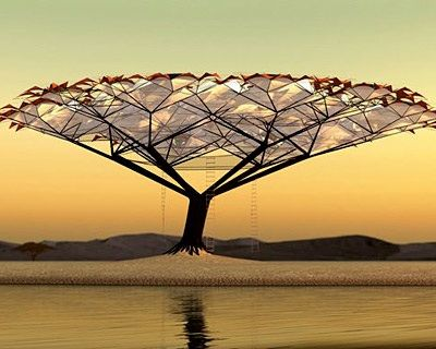 8 Of The Best Treehouses In The World Canopy Design