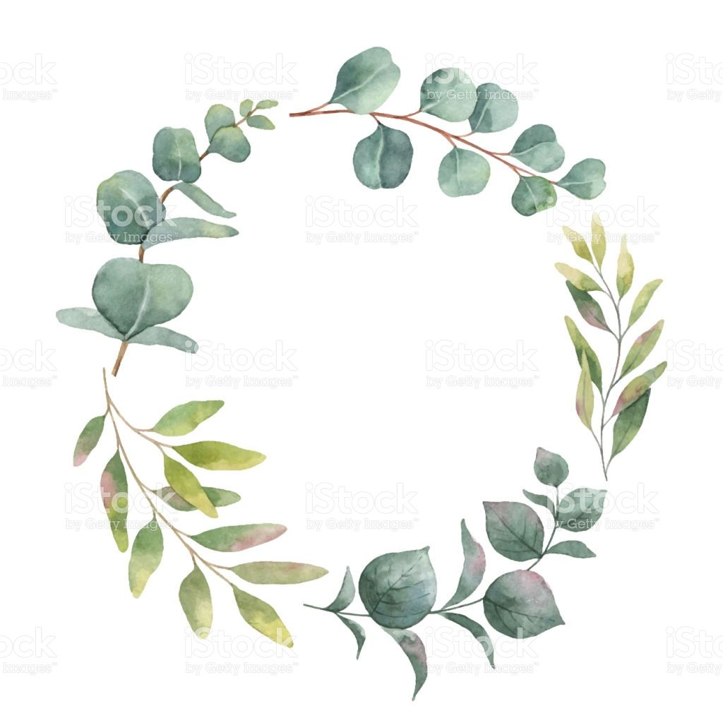 Watercolor Vector Wreath With Green Eucalyptus Leaves And Branches