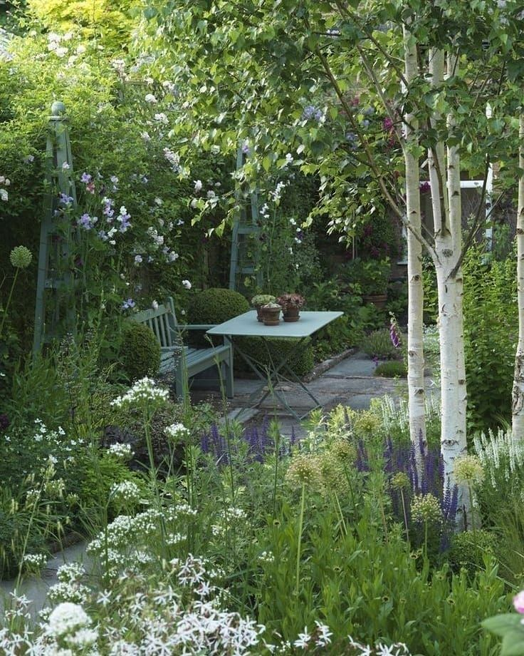 Gardens And Architecture On Instagram Woodland Garden Birch Trees Underplanted With Shade Loving Perennial In 2020 Cottage Garden Cottage Garden Design Backyard
