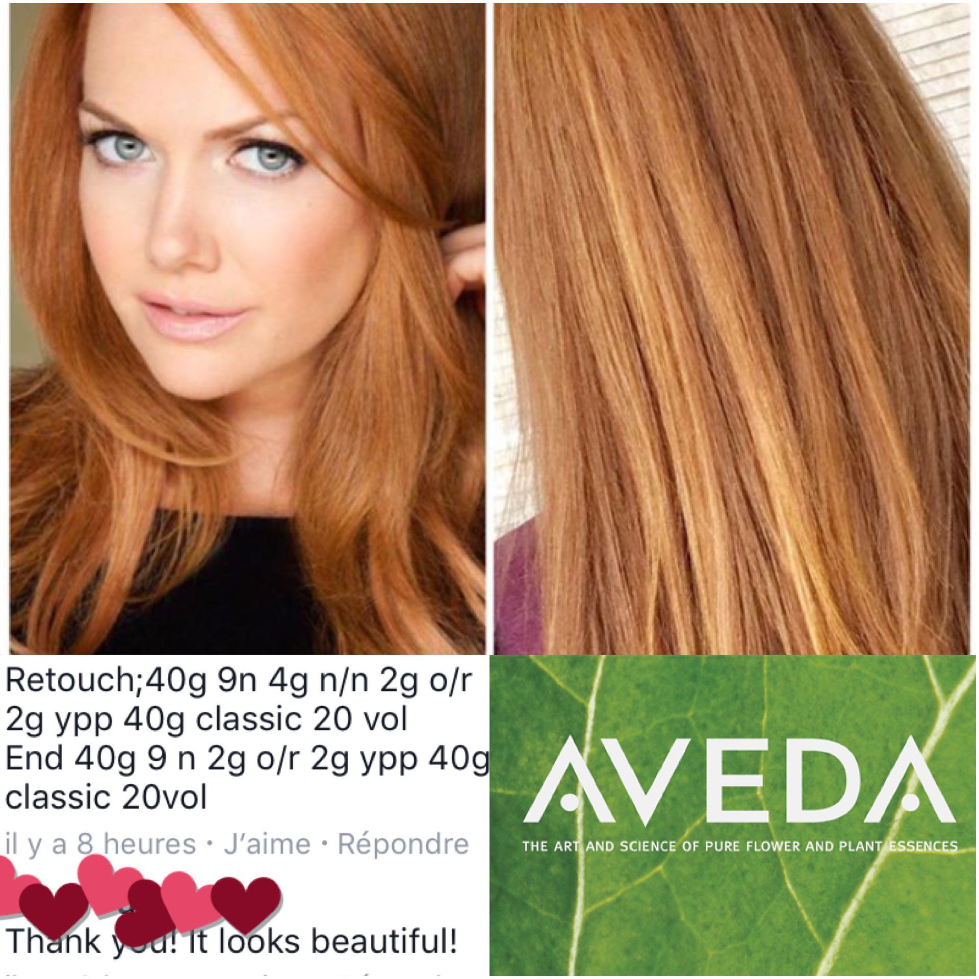 Pin By Jaxq E On Aveda In 2020 Aveda Hair Color Aveda Hair Hair Color Chart