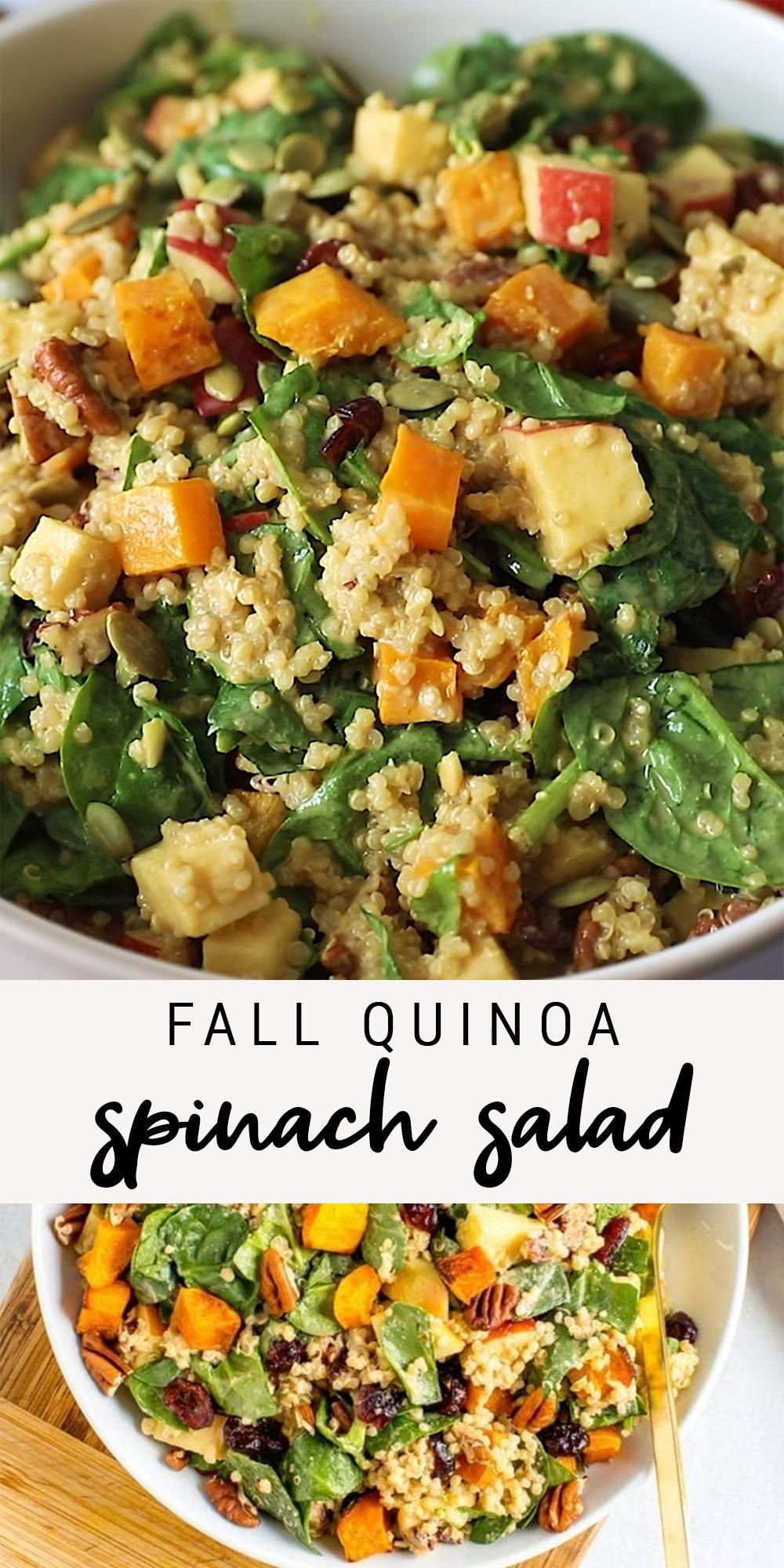Photo of Fall Quinoa Spinach Salad | Healthy Salad with Butternut Squash, Apples, Cranberries and Pecans