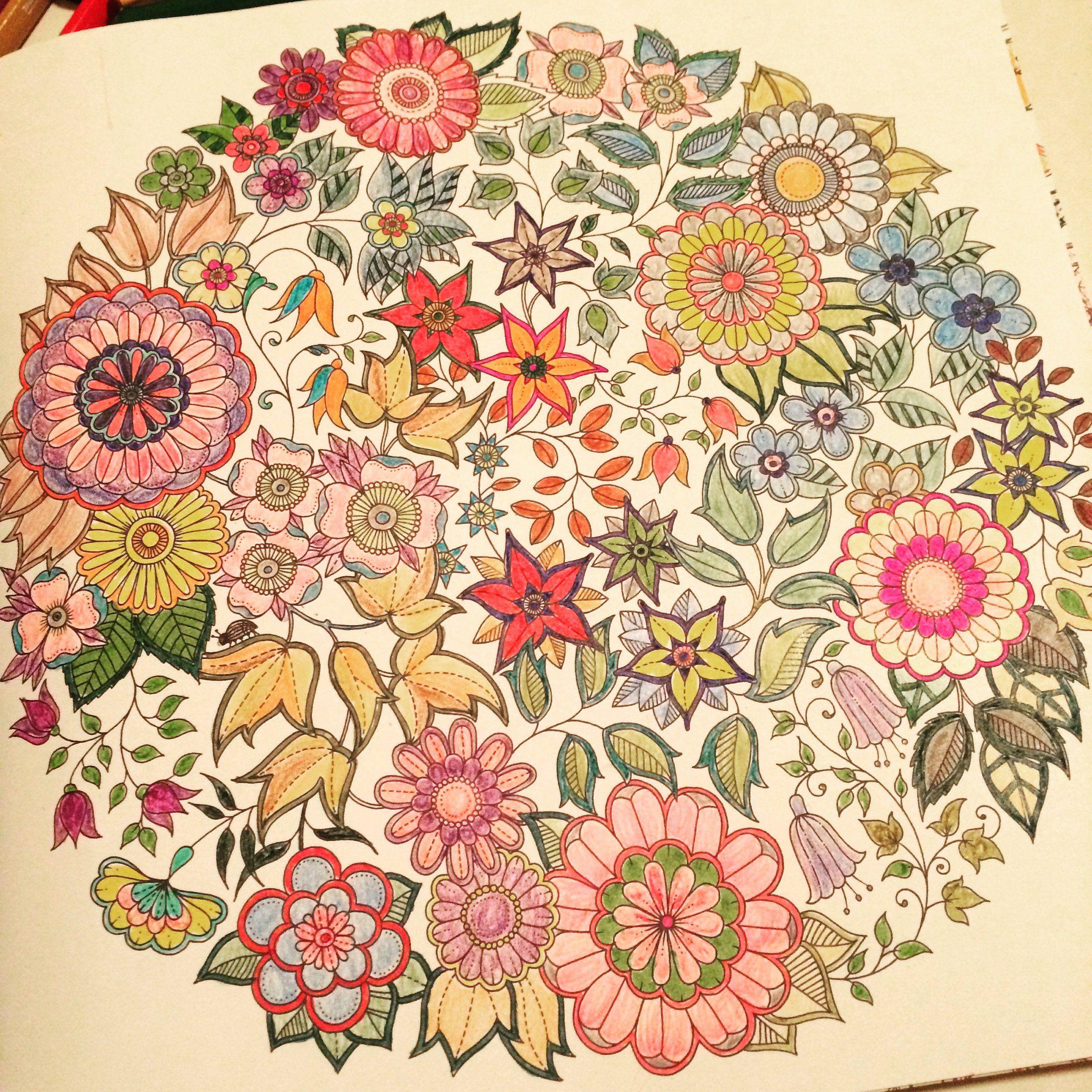 Coloring Book Secret Garden Beautiful Johanna Basford ...