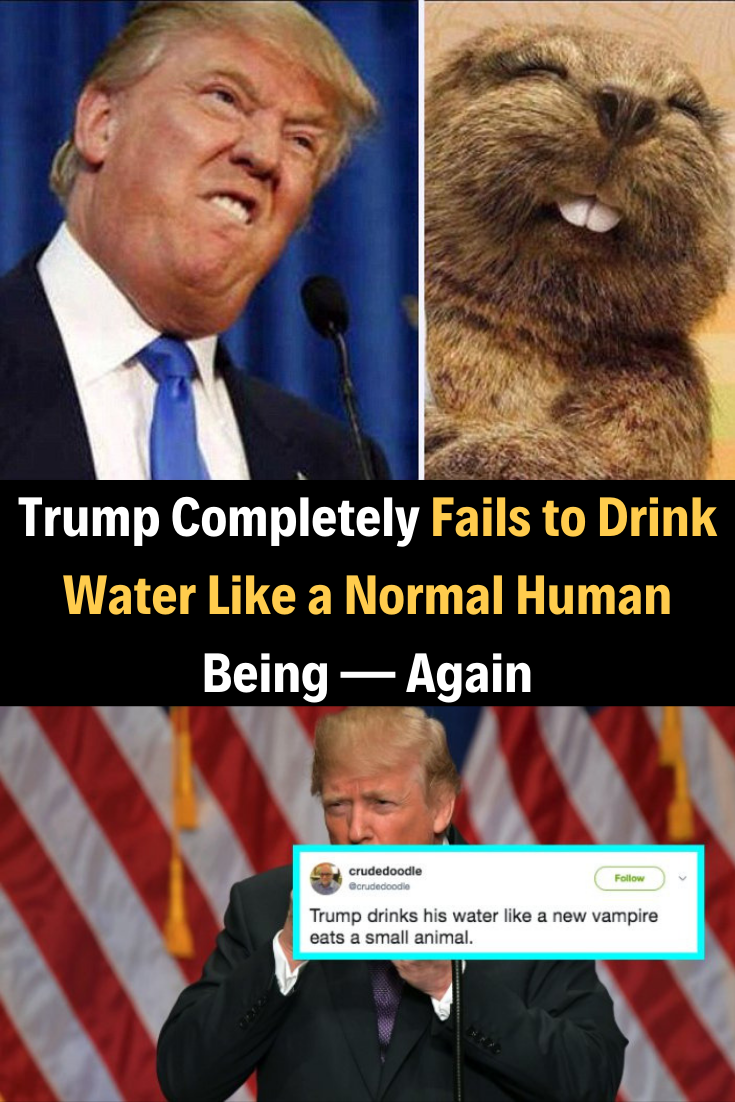 Trump Completely Fails To Drink Water Like A Normal Human Being Again Humor Women Humor Drinking Water