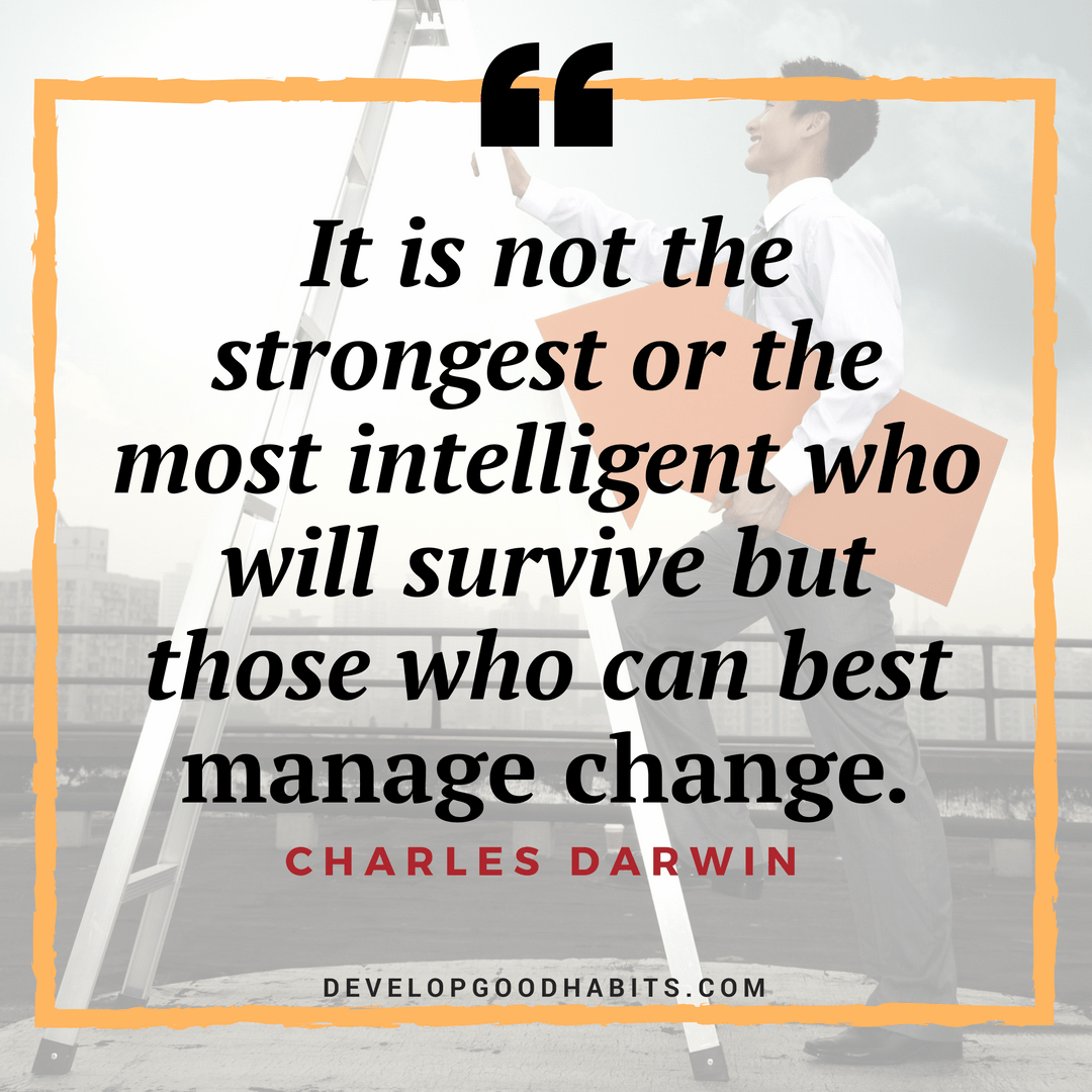 It Is Not The Strongest Or The Most Intelligent Who Will Survive But Those Who Can Best Manage Change Charles Darwin