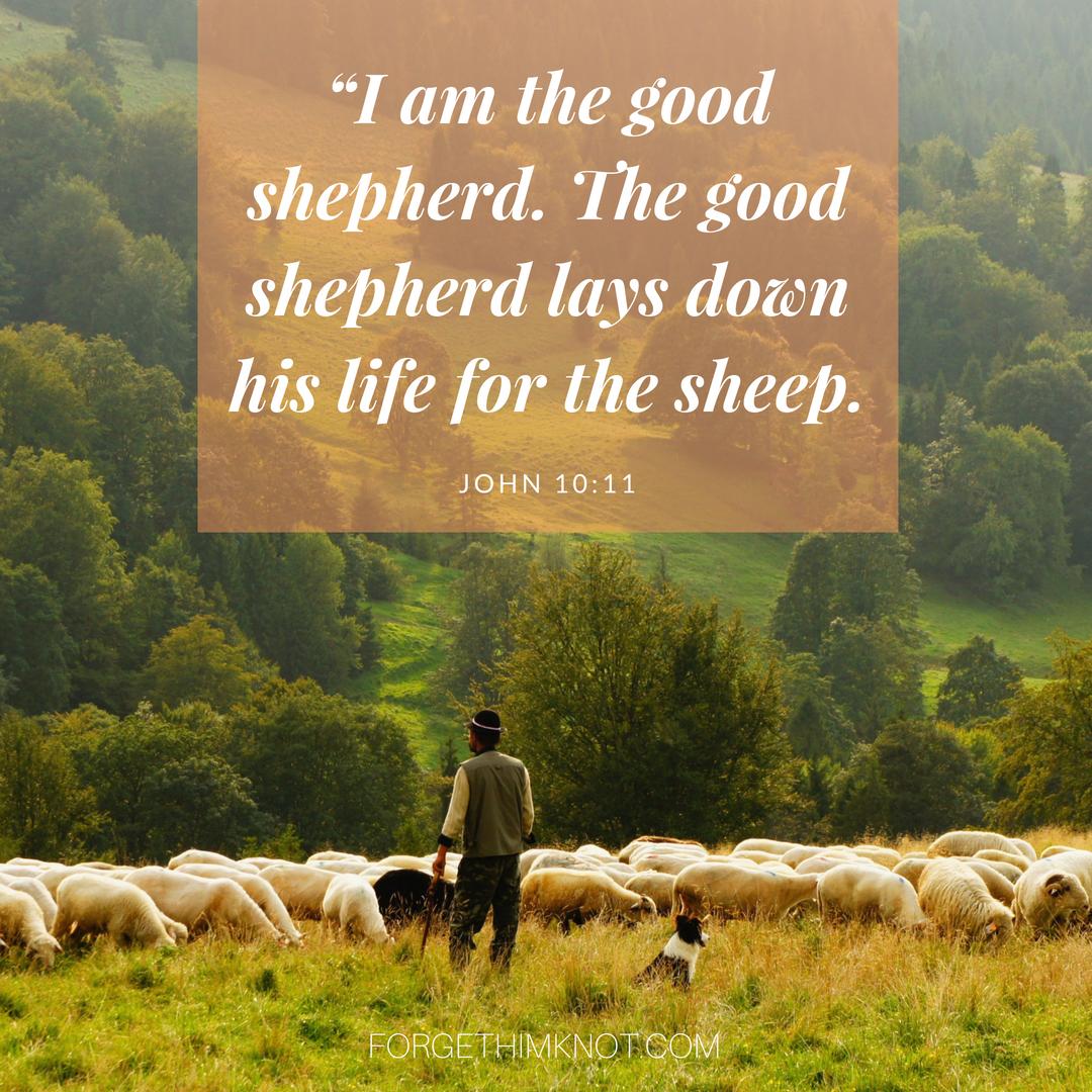 John 10l11 I Am The Good Shepherd Bibleverse Scripture Shepherd