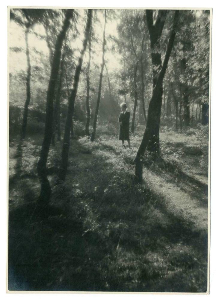 DONNA TRA GLI ALBERI.Foto d Epoca Old Photo 1930 Vintage Natura Paesaggi F267