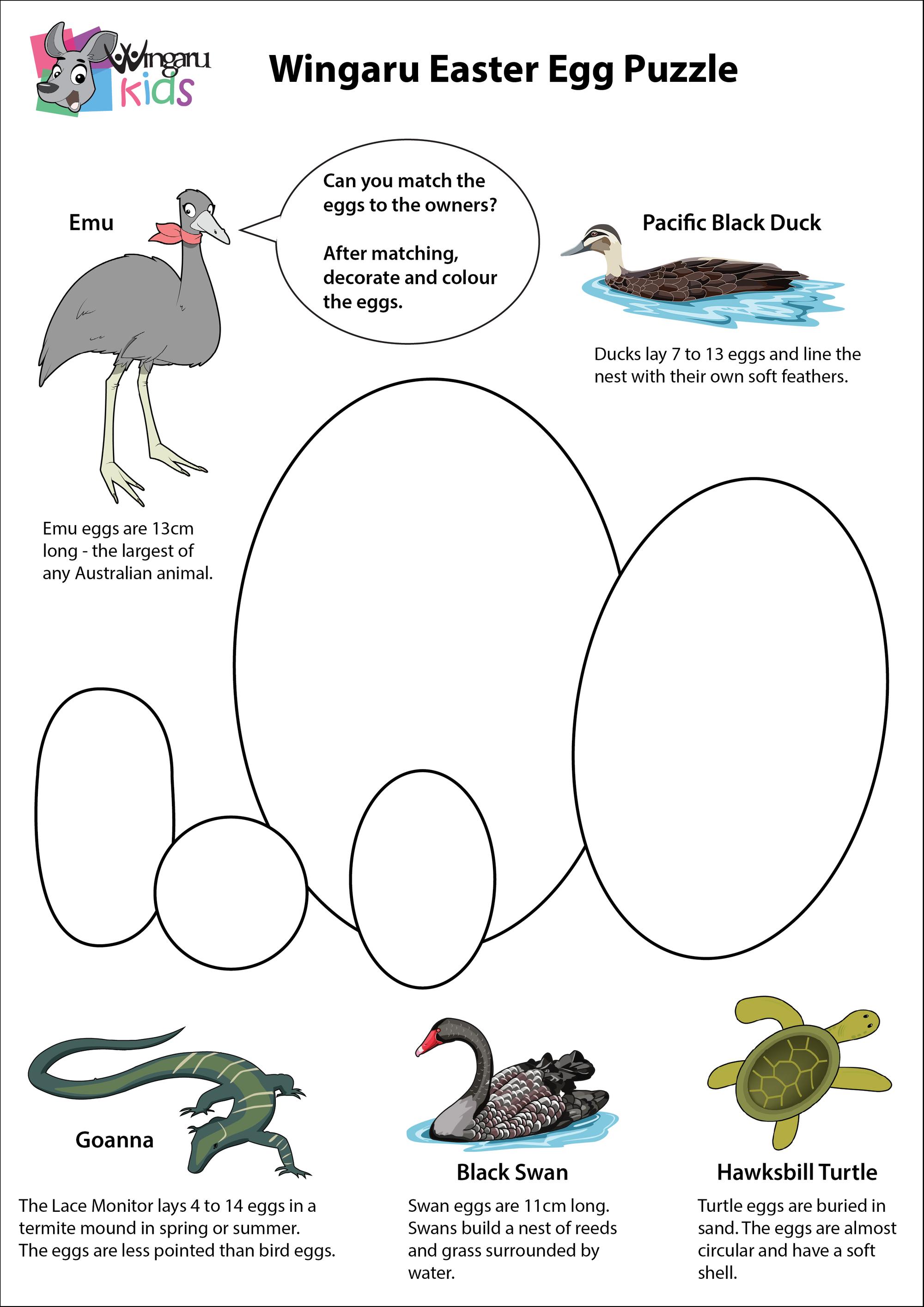Free Download Bush Tucker Foods Easter Classroom Activities Free Printable Activities Aboriginal Education