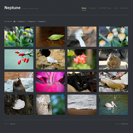 Neptune is a free WordPress theme by WPExplorer.com that\'s perfect ...