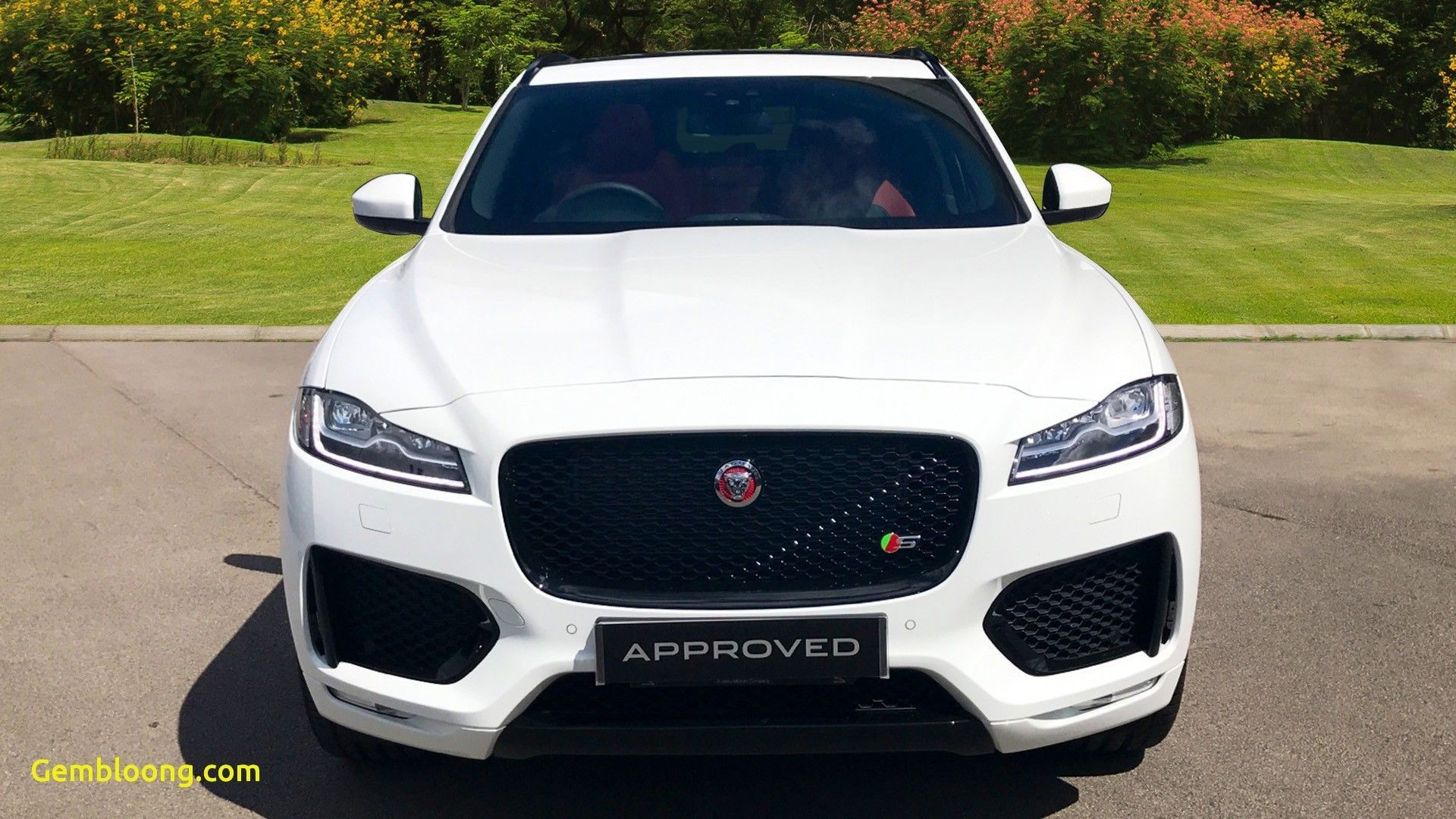 Awesome Cars for Sale Near Me New