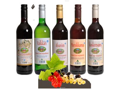 The winery berry wines Punaisen Tuvan Viinitila. -  South Ostrobothnia province of Western Finland. - Viinejä Etelä-Pohjanmaalta.