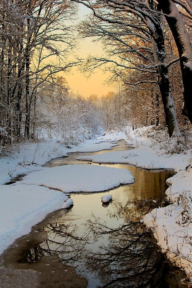 65+ Awesome Winter Landscape Photos
