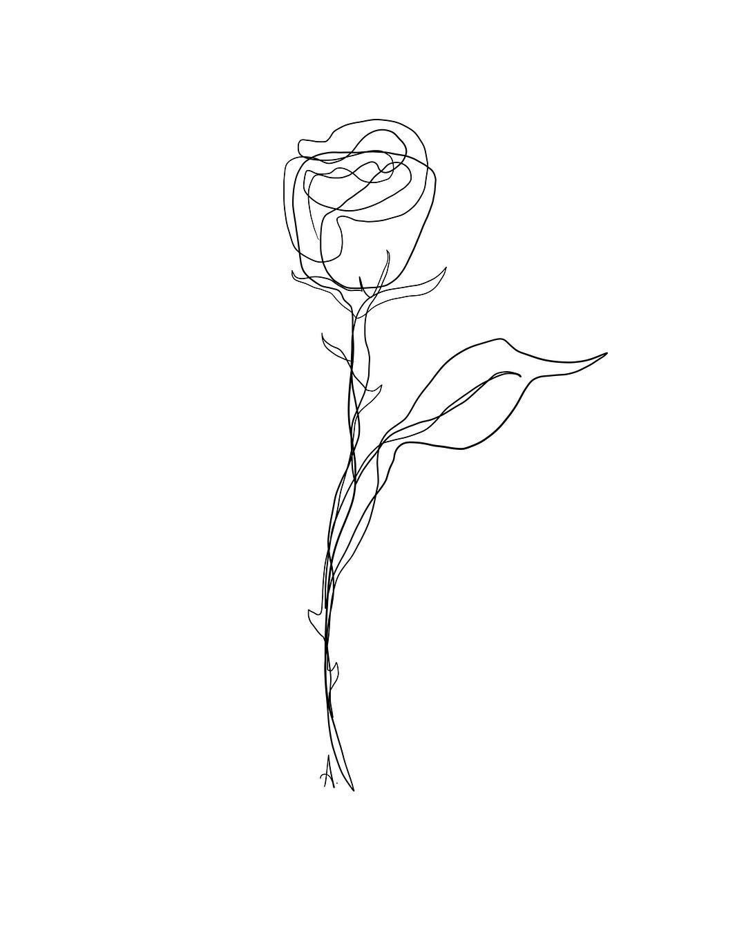 Pin By Lexi Deets On Wall Art Line Art Drawings Flower Line Drawings Rose Line Art