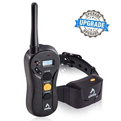 The Best Dog Training Collar Of 2019 Best Pet Pro The Best Dog